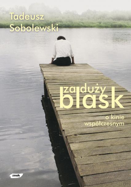 Za duży blask. O kinie współczesnym  - Tadeusz Sobolewski  | okładka