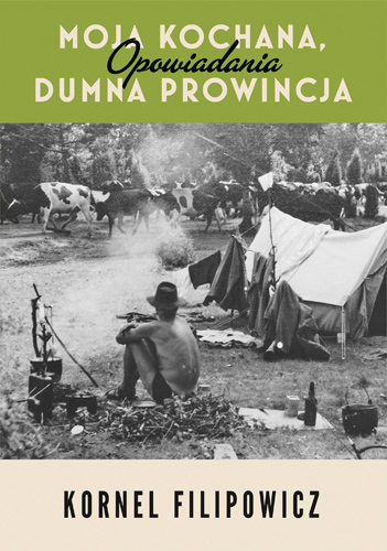Moja kochana dumna prowincja - Kornel Filipowicz | okładka