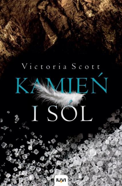 Kamień i sól - Victoria Scott | okładka