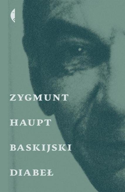 Baskijski diabeł - Zygmunt Haupt | okładka