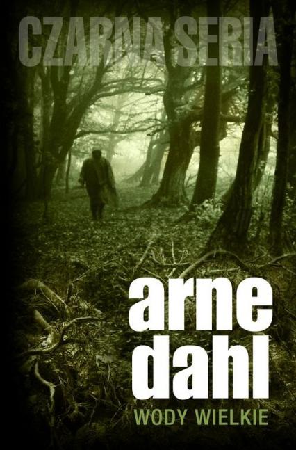 Wody wielkie - Dahl  Arne | okładka
