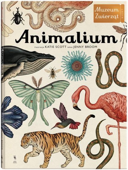 Animalium Muzeum zwierząt - Jenny Broom | okładka