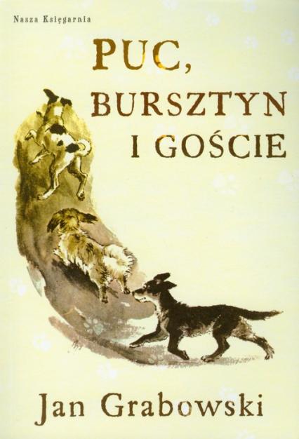 Puc, Bursztyn i goście - Jan Grabowski | okładka