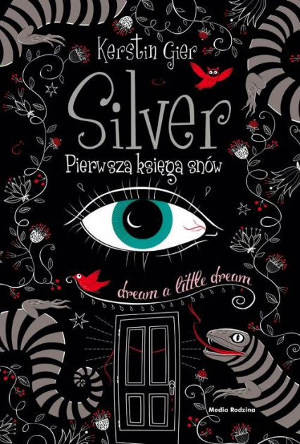 Silver. Pierwsza księga snów - Kerstin Gier | okładka