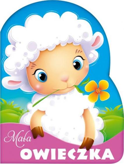 Mała owieczka - Urszula Kozłowska | okładka
