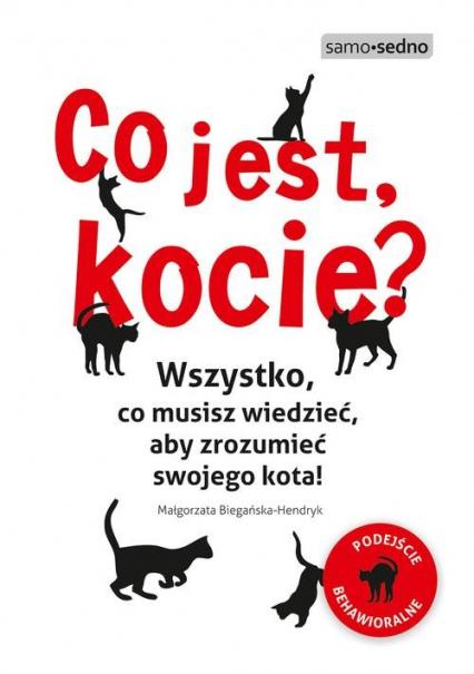 Co jest, kocie? Wszystko, co musisz wiedzieć, aby zrozumieć swojego kota - Małgorzata Biegańska-Hendryk | okładka