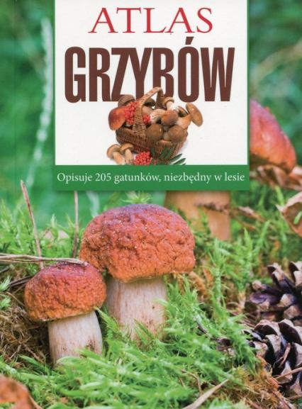Atlas grzybów - Sławomir Sokół | okładka