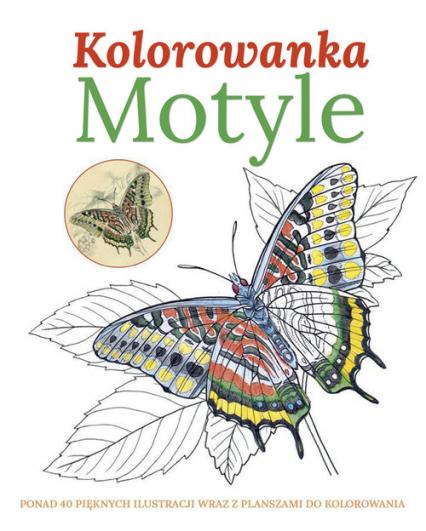 Motyle Kolorowanka - zbiorowa praca | okładka