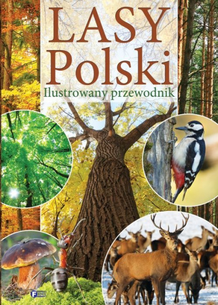 Lasy Polski Ilustrowany przewodnik -  | okładka
