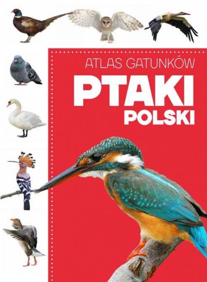 Atlas gatunków Ptaki Polski -  | okładka