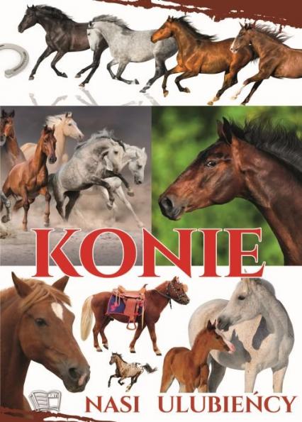 Konie nasi ulubieńcy - Zbiorowa Praca | okładka