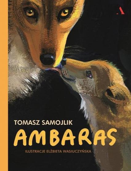 Ambaras - Tomasz Samojlik | okładka