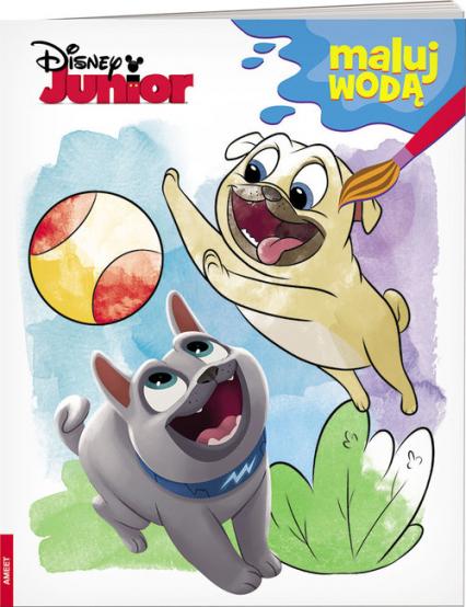 Disney Junior Maluj wodą MW-4 -    okładka
