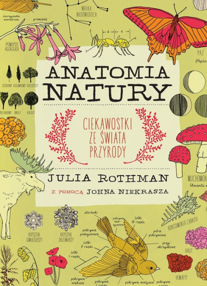 Anatomia natury - Julia Rothman | okładka
