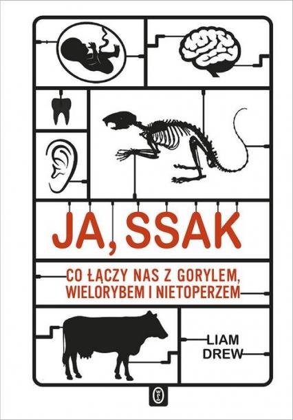 Ja, ssak Co łączy nas z gorylem, wielorybem i nietoperzem - Liam Drew | okładka