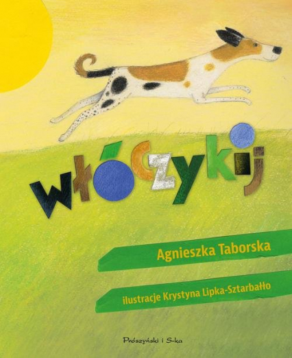 Włóczykij - Agnieszka Taborska | okładka