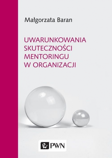 Uwarunkowania skuteczności mentoringu w organizacji - Małgorzata Baran | okładka