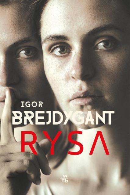 Rysa - Igor Brejdygant | okładka