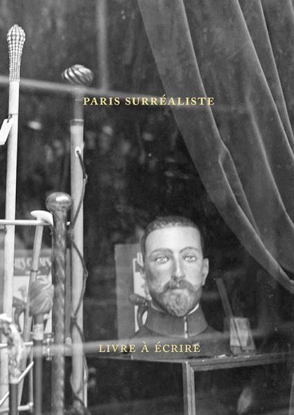 Paris surréaliste Livre pour écrire - Agnieszka Taborska | okładka