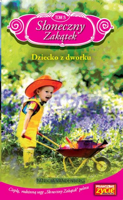 Słoneczny Zakątek Tom 3 Dziecko z dworku - Patricia Vandenberg | okładka