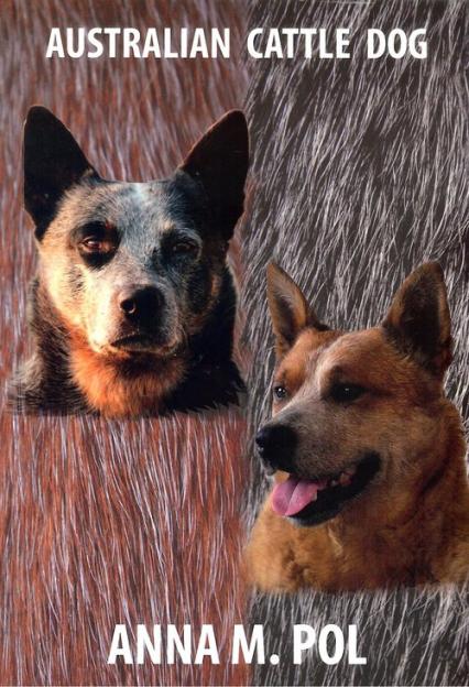 Australian Cattle Dog - Pol Anna M. | okładka