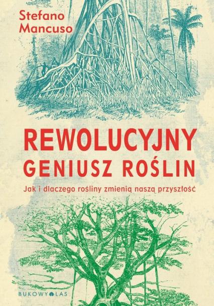 Rewolucyjny geniusz roślin Jak i dlaczego rośliny zmienią naszą przyszłość - Mancuso Stefano | okładka