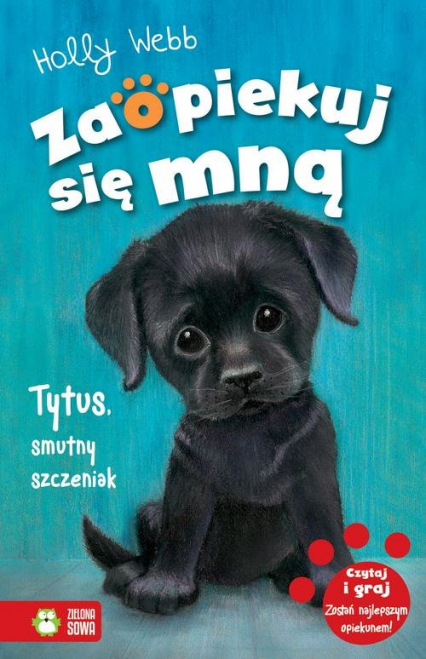 Zaopiekuj się mną Tytus, smutny szczeniak - Holly Webb | okładka