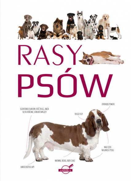 Rasy psów -  | okładka