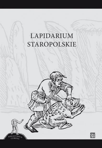 Lapidarium Staropolskie -  | okładka