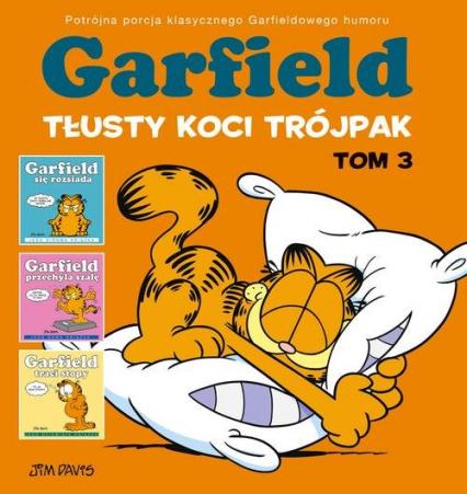 Garfield Tłusty koci trójpak Tom 3 - Jim Davis   okładka