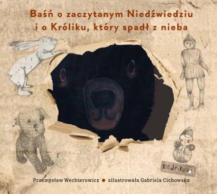 Baśń o zaczytanym Niedźwiedziu i o Króliku, który spadł z nieba - Przemysław Wechterowicz | okładka