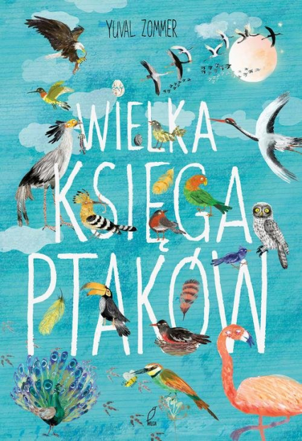 Wielka księga ptaków - Yuval Zommer   okładka