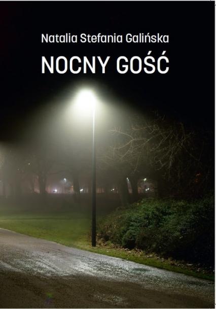 Nocny Gość - Galińska Natalia Stefania | okładka