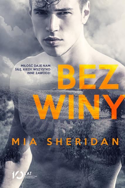 Bez winy - Mia Sheridan | okładka