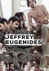 Intryga małżeńska - Jeffrey Eugenides  | mała okładka