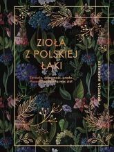 Zioła z polskiej łąki - Machałek Patrycja | mała okładka