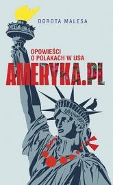 Ameryka.pl Opowieści o Polakach w USA - Dorota Malesa | mała okładka
