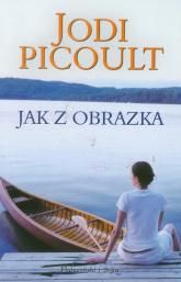 Jak z obrazka - Jodi Picoult | mała okładka