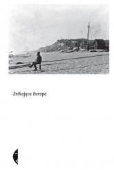 Znikająca Europa - praca zbiorowa | mała okładka