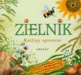 Zielnik. Rośliny uprawne - Garbarczyk Małgorzata, Garbarczyk Henryk | mała okładka