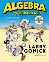 Algebra w obrazkach - Larry Gonick | mała okładka