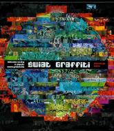 Świat graffiti. Sztuka ulicy z pięciu kontynentów - Nicholas Gane | mała okładka