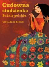 Cudowna studzienka. Baśnie polskie - Joanna Papuzińska | mała okładka