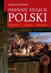 Pierwsze stulecie Polski. Państwo - władcy - sensacje - Andrzej Zieliński | mała okładka