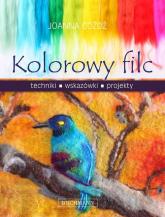 Kolorowy filc - Joanna Góźdź | mała okładka