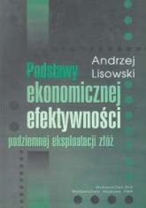 Podstawy ekonomicznej efektywności podziemnej eksploatacji złóż - Andrzej Lisowski | mała okładka