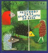 Przygody jeża spod miasta Zgierza - Wanda Chotomska | mała okładka