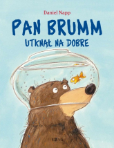 Pan Brumm utknął na dobre - Daniel Napp | mała okładka