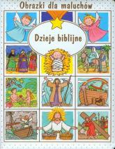 Dzieje biblijne - Emilie Beaumont | mała okładka