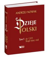 Dzieje Polski Tom 1 Skąd nasz ród - Andrzej Nowak | mała okładka